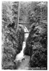 Sol Duc Falls with rustic bridge near the top of the falls. Olympic National Park, 1938.