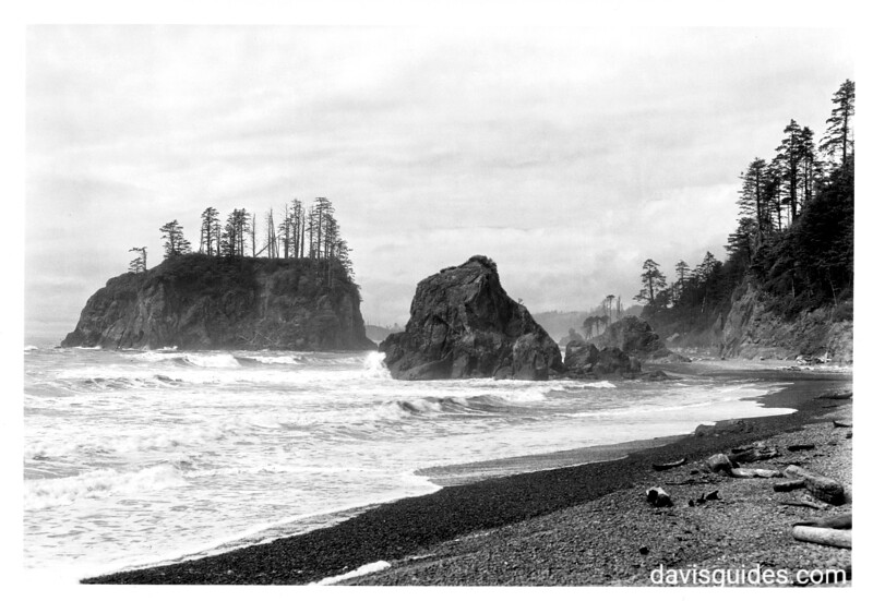 Rocks at Ruby Beach. Proposed Olympic National Park, 1936.