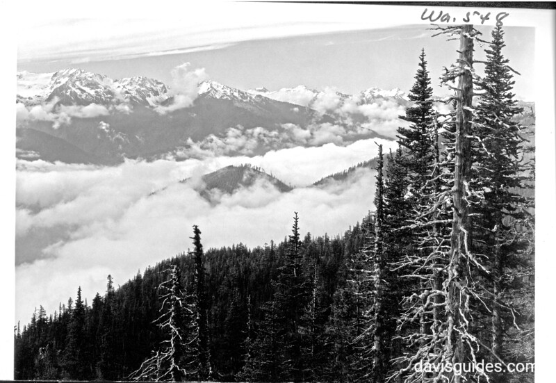 The Olympic Mountains from Hurricane Ridge, Olympic National Park, 1938.