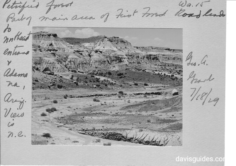 Part of the main area of First Forest. The road leads to northeast entrance. Image with George Grant's handwritten margin notations. Petrified Forest National Park, 1929.