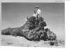 People sitting on petrified log in Rainbow Forest near park headquarters, showing large root system. Petrified Forest National Park, 1929.