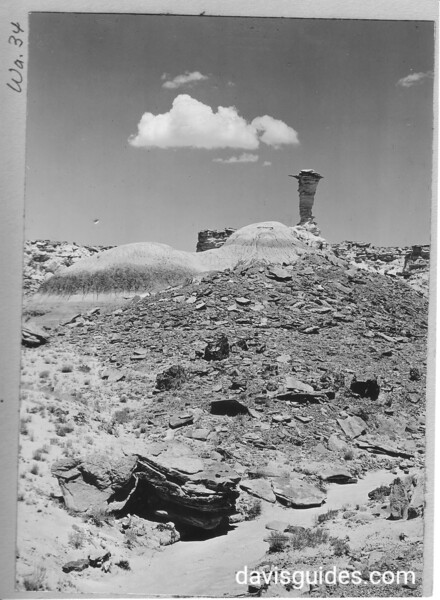 """""""Eagle's Nest"""", a First Forest standstone pillar. Petrified Forest National Park, 1929. The pillar fell in 1941."""