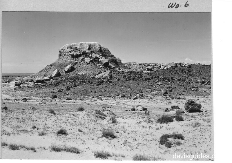 Isolation Hill in Rainbow Forest, the last remnant of a sandstone mesa in the final stages of erosion. Petrified Forest National Park, 1929.