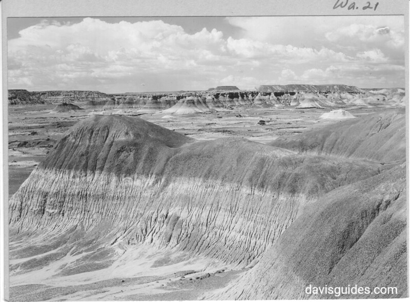 General view of the Third Forest showing badlands erosion in foreground. Petrified Forest National Park, 1929.