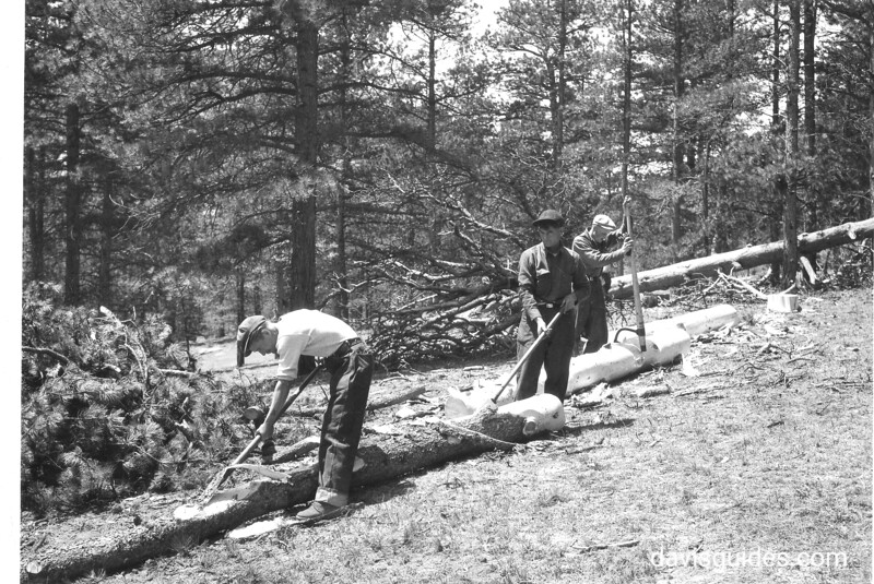 CCC enrollees carry out pest control work in Cow Creek Valley. Rocky Mountain National Park, 1933.