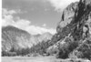 Zumwalt Meadow on South Fork of Kings River. Sequoia and Kings Canyon National Parks, 1940.