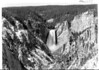 Yellowstone Canyon and the Lower Falls from Artist's Point. Yellowstone National Park, 1939.