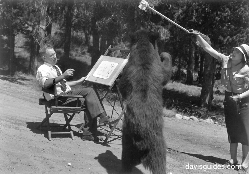 Assistant teasing a bear so the artist can sketch the animal. Yellowstone National Park, 1933.