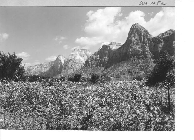 East side of Zion Canyon from entrance below Springdale, Utah. Zion National Park, 1929.