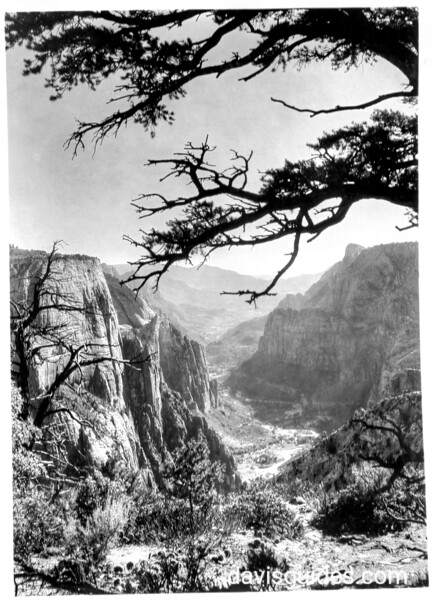 View into Zion Canyon from east of the Observation Point. Zion National Park, 1929.