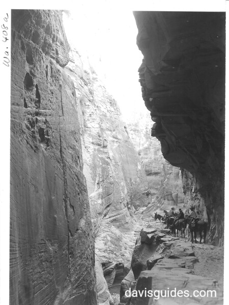 Echo Canyon on East Rim Trail. Zion National Park, 1929.