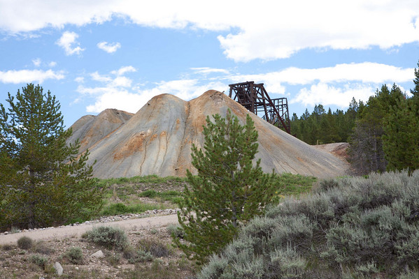 While in Leadville I rode my bike on the Mineral Belt Trail, a 12 mile trip starting at 10000 feet and topping out at 10600 feet. It travels around the California Gulch, the location of the old, now abandoned, mines that enriched Leadville around the turn of the century. Riches were in lead and silver, some gold. Guggenheim, Unsinkable Molly Brown, Soapy Smith, Horace Tabor, Doc Holliday, all enriched themselves, or their reputations, along with may others, in Leadville. At one time it had 20,000 inhabitants and who were consuming a thousand kegs of beer every day. Leadville is the highest incorporated city in the USA at 10,200 feet.