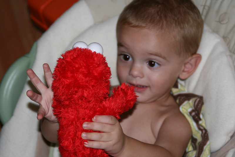 Wil looks at Elmo with such curiosity...
