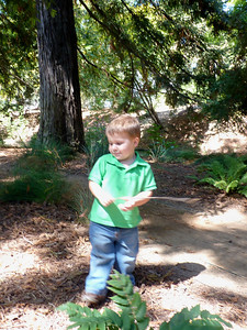 Joey in the UC Davis Arboretum