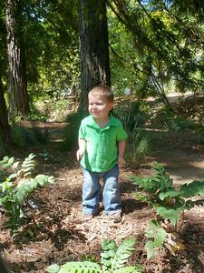 Joey in the UC Davis Arboretum