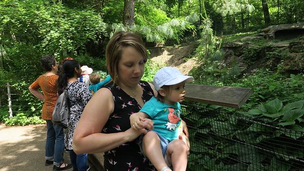 Leah at the Zoo 2018
