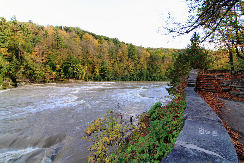 At the top of the falls the leaves carpeted the ground in their beautiful Fall colors of  bright red, yellow  and orange by the waters edge