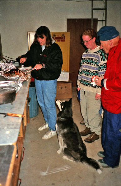 """THANKSGIVING DINNER HELPER<br /> Clea was always willing to stand by in case her services as a vacuum cleaner were ever needed. No """"5-second rule"""" in her vocabulary."""