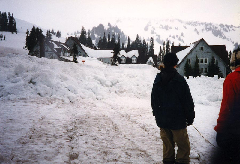 PARADISE<br /> Mt Rainier National Park, Washington