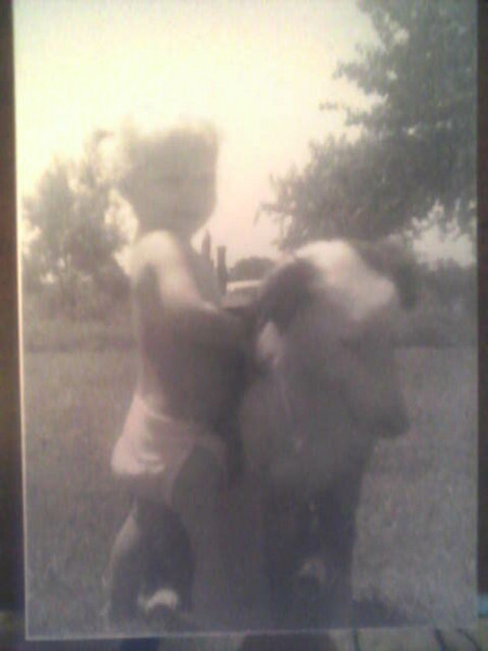 1962 - I love this picture - it's me in cute little pigtails and hugging my border collie - at the farm in Boxelder, Red River County, Texas