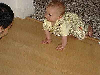 I love crawling around the house.