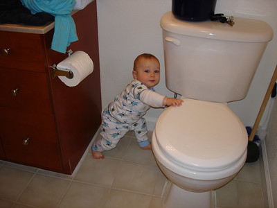 Can I try out this potty?