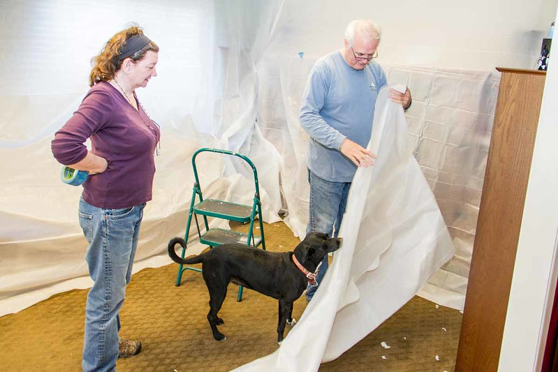QA on the plastic sheeting by foredog Abby
