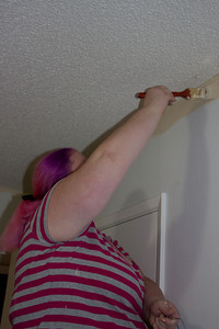 Sally painting one of the several tan walls. Love the new pink hair?