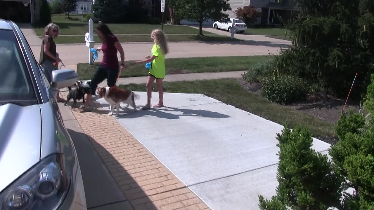 Video:  11 minutes ~~ A family gathering so cousins can meet for the first time (Mia & Alfia) Sun., Sept. 3, 2017 at the Downings