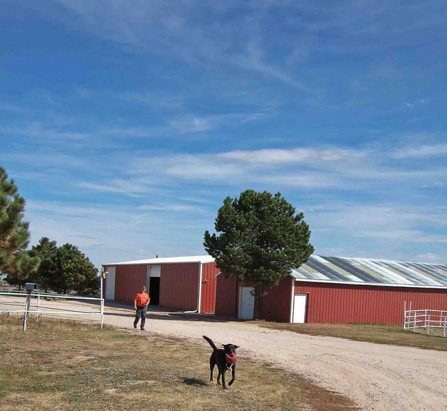 "Peggy Wolff Way Ranch - Shane & ""Hock"""