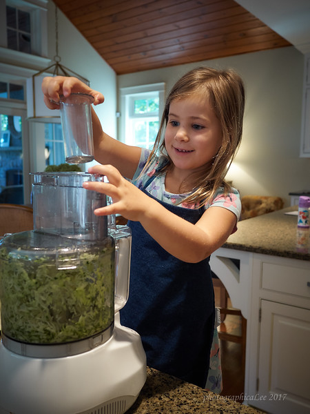 Making zucchini bread