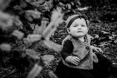 00024--©ADHphotography2018--Loomis--Family--November29