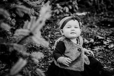 00020--©ADHphotography2018--Loomis--Family--November29