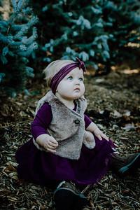 00001--©ADHphotography2018--Loomis--Family--November29