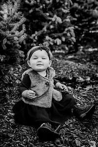 00016--©ADHphotography2018--Loomis--Family--November29