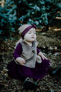 00003--©ADHphotography2018--Loomis--Family--November29