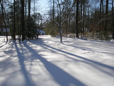 Lori and Tex Snow 01:2010 002