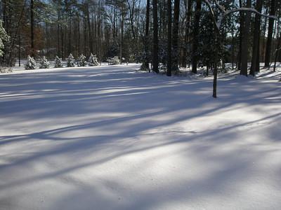 Lori and Tex Snow 01:2010 000