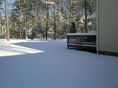 Lori and Tex Snow 01:2010 006