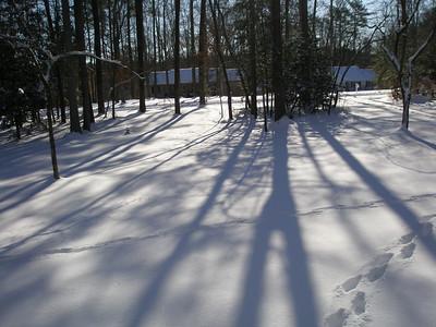 Lori and Tex Snow 01:2010 020