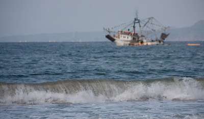 Shrimp Boat Waiting in the Bay