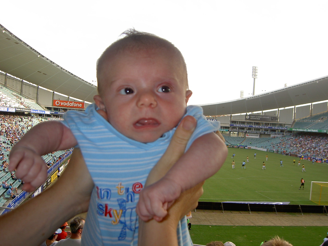 Sydney FC vs Newcastle