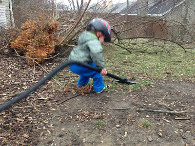 Helping clean up the back yard