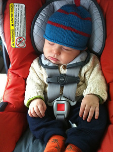 Coming home from his four month wellness visit aka doctor's appointment. Luca was such a good sport when it came to the doctor's poking and prodding.  Stats: 15.2 lbs and 25.9 inches long.