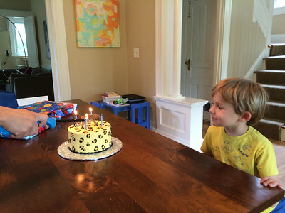 Luca wanted a jaguar cake for his birthday.