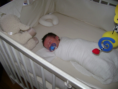 Luca papoose in crib