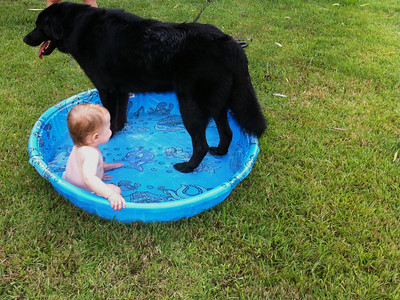 Luca and Coho cooling off in the 90 degree heat.
