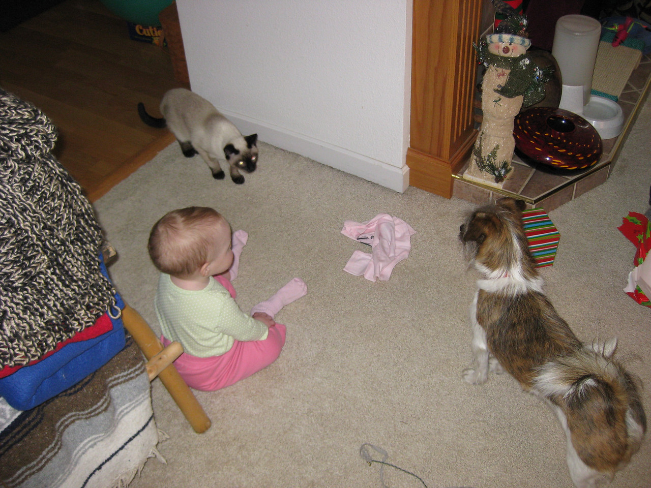 Zoe, Lucy and Moto, Mexican standoff