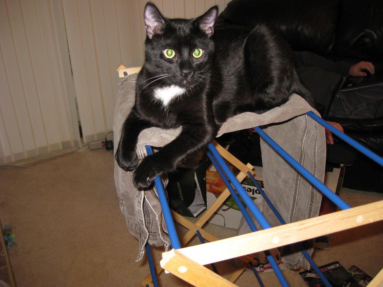 Pete loves Jungle Jims, umm drying racks.
