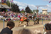 A day at the Renaissance Festival -- the Joust competition.